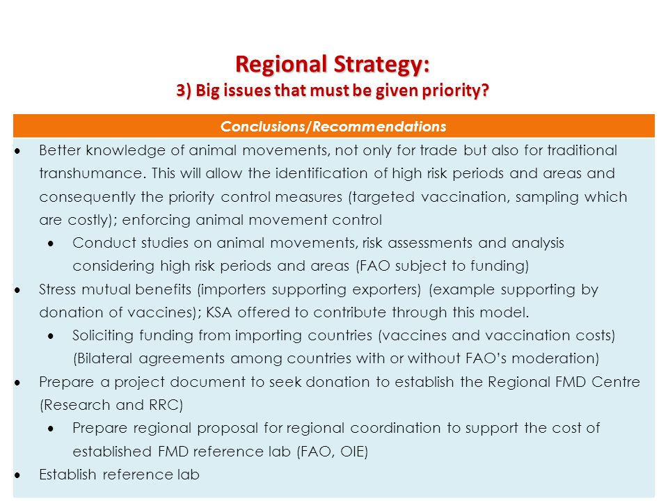 3) Big issues that must be given priority Conclusions/Recommendations