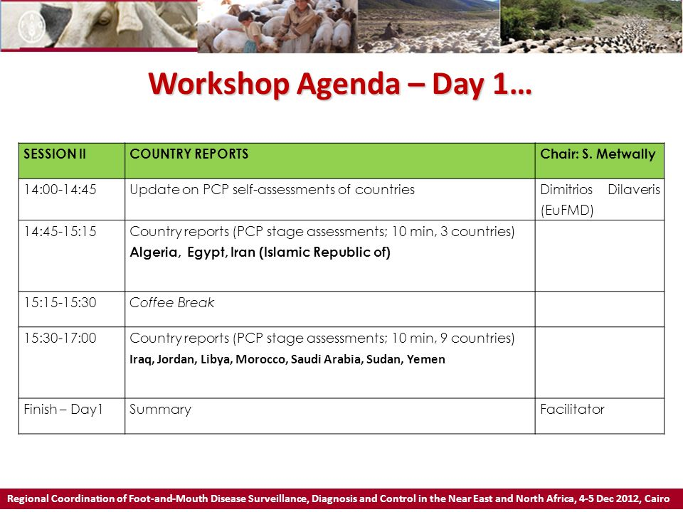 Workshop Agenda – Day 1… SESSION II COUNTRY REPORTS Chair: S. Metwally
