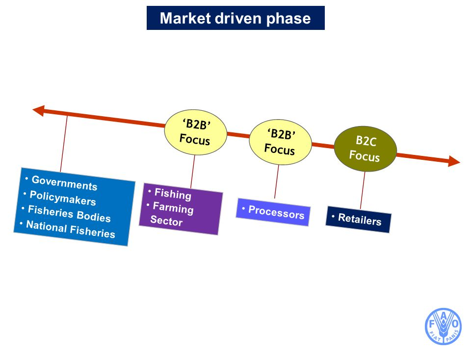 Market driven phase 'B2B' Focus 'B2B' Focus B2C Focus Governments