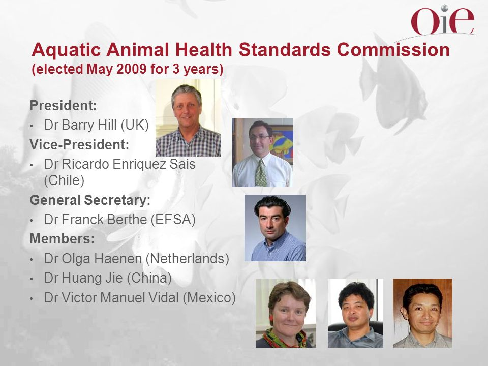 Aquatic Animal Health Standards Commission (elected May 2009 for 3 years)