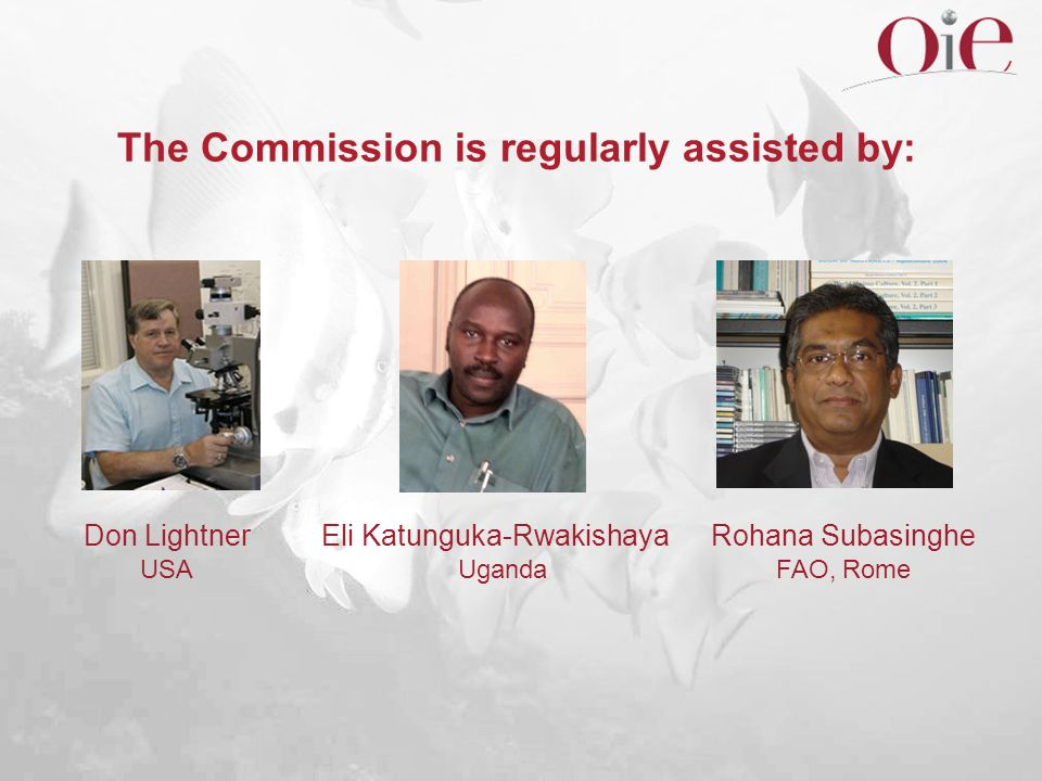 The Commission is regularly assisted by: