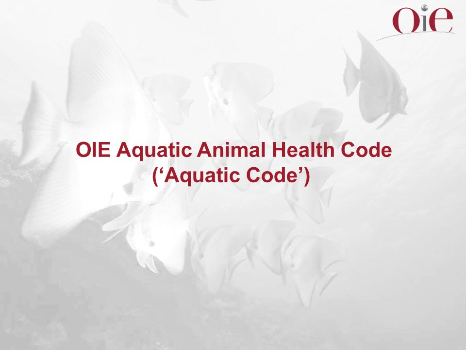 OIE Aquatic Animal Health Code