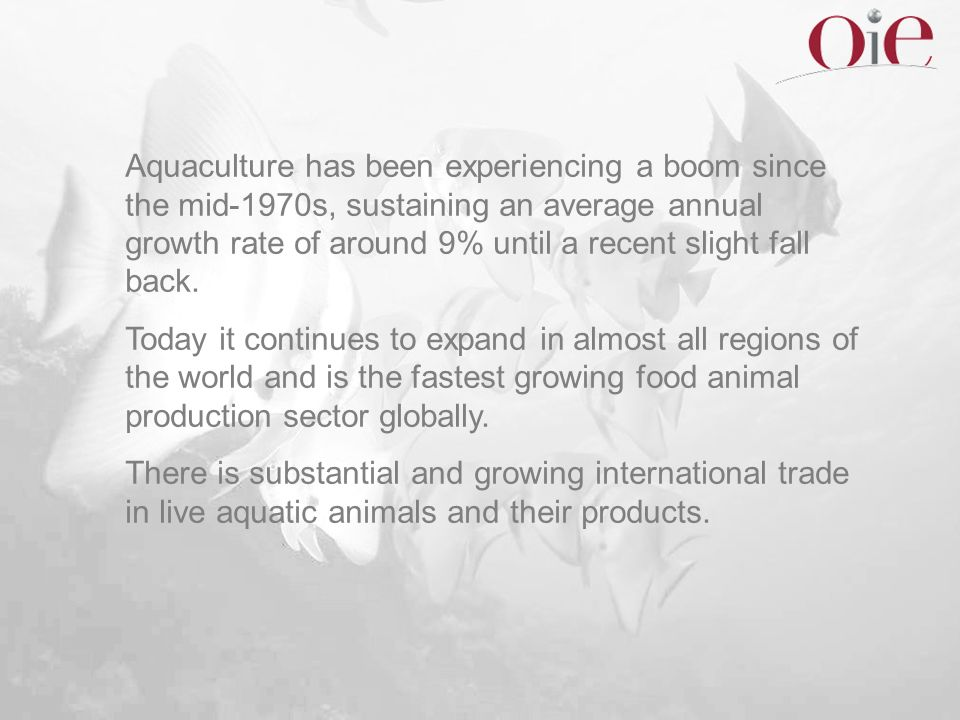 Aquaculture has been experiencing a boom since the mid-1970s, sustaining an average annual growth rate of around 9% until a recent slight fall back.