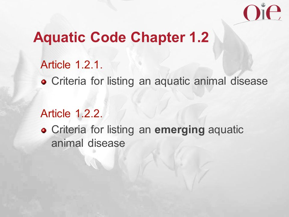 Aquatic Code Chapter 1.2 Article 1.2.1.