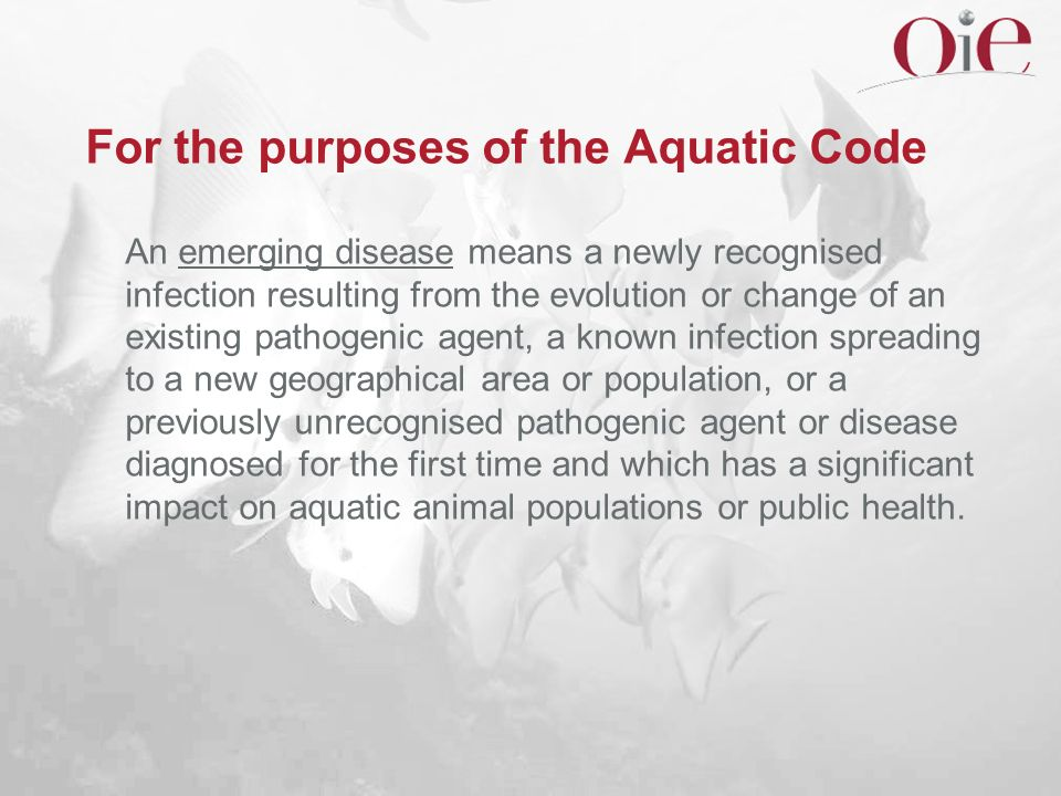 For the purposes of the Aquatic Code