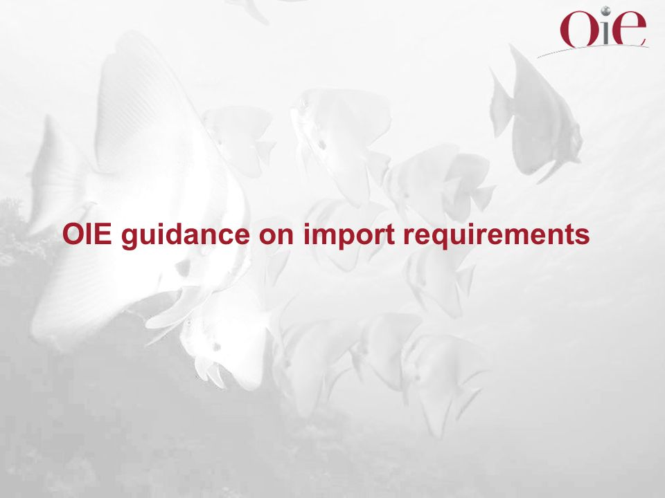 OIE guidance on import requirements