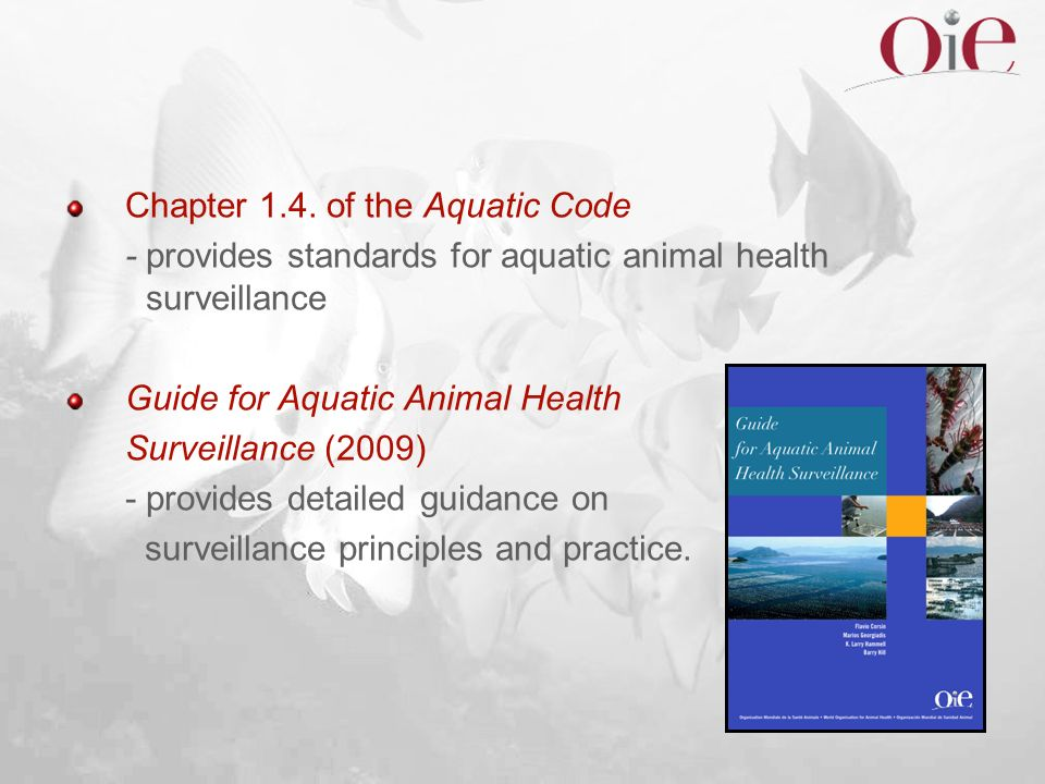 Chapter 1.4. of the Aquatic Code