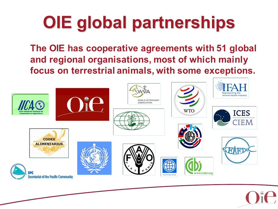 OIE global partnerships