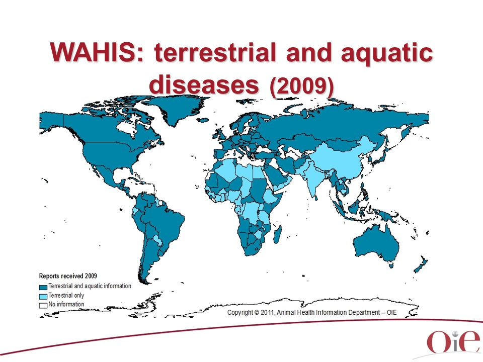 WAHIS: terrestrial and aquatic diseases (2009)