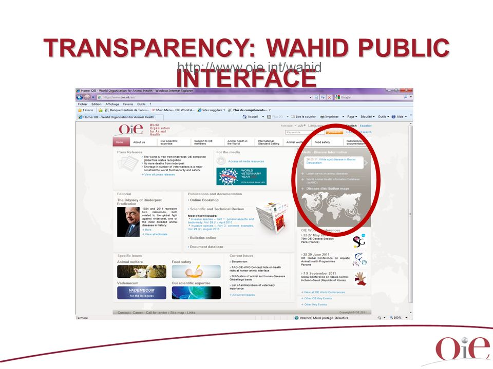 TRANSPARENCY: WAHID PUBLIC INTERFACE