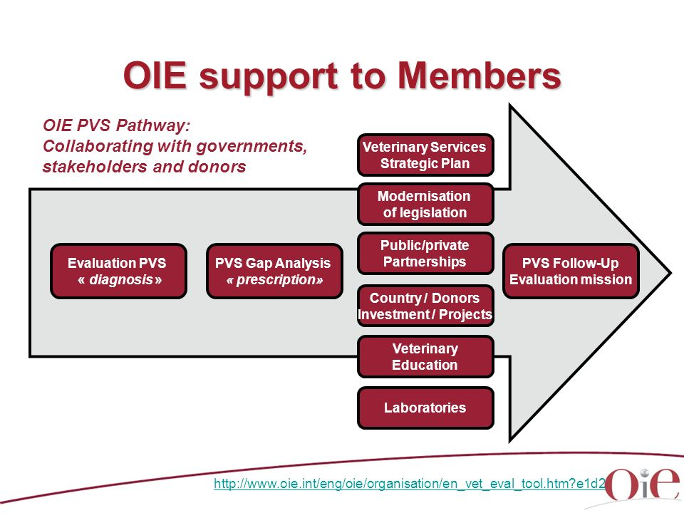 OIE support to Members OIE PVS Pathway: