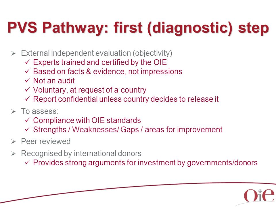 PVS Pathway: first (diagnostic) step