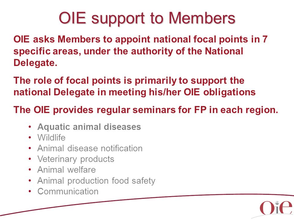 OIE support to Members OIE asks Members to appoint national focal points in 7 specific areas, under the authority of the National Delegate.