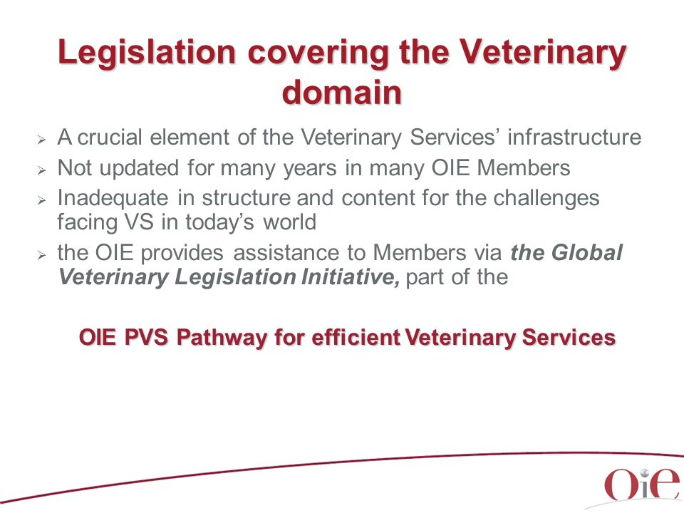 Legislation covering the Veterinary domain