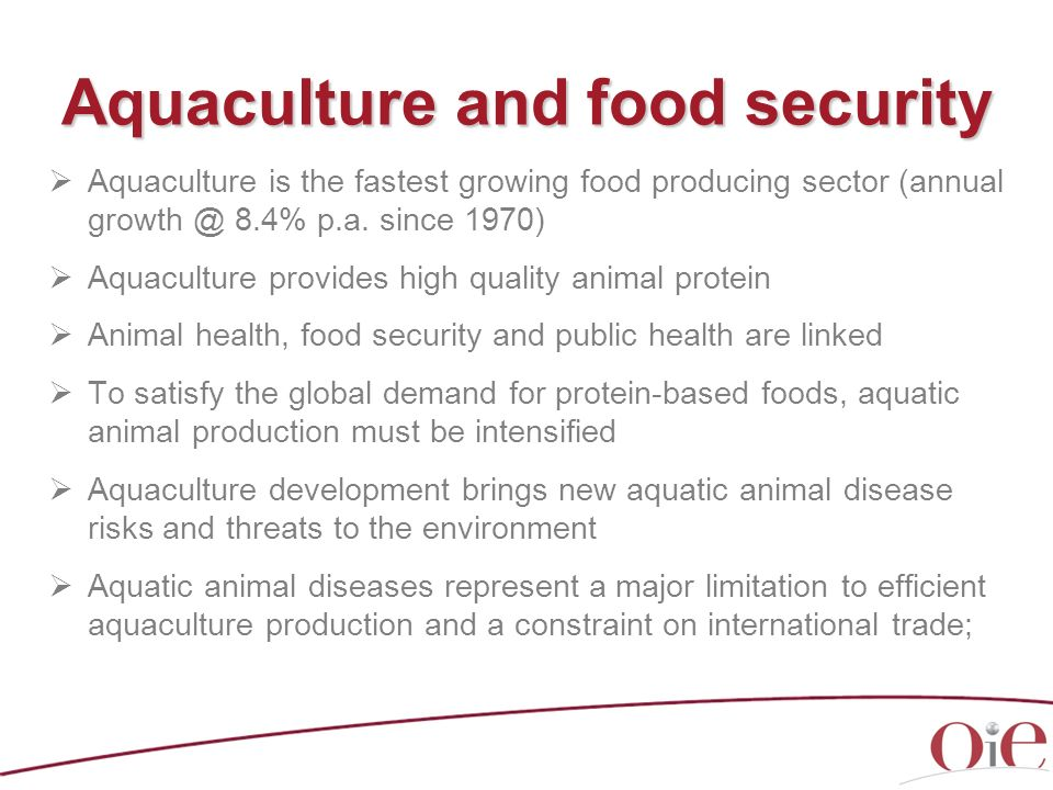 Aquaculture and food security