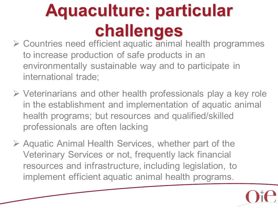Aquaculture: particular challenges