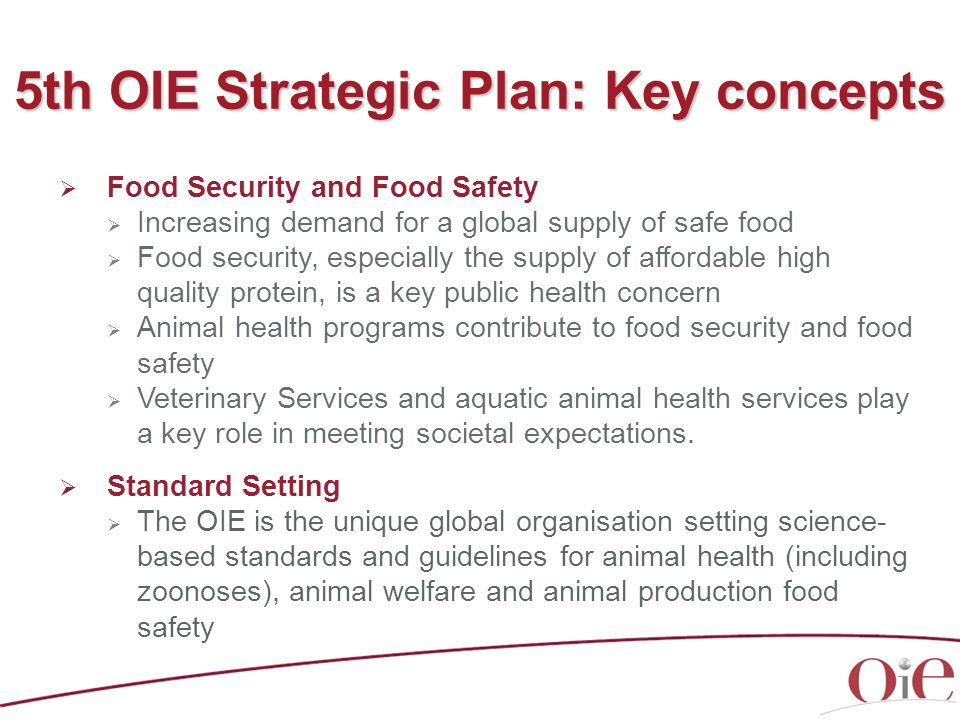 5th OIE Strategic Plan: Key concepts