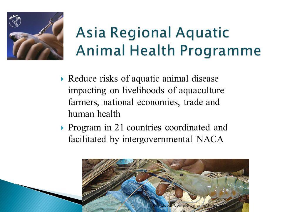 Asia Regional Aquatic Animal Health Programme