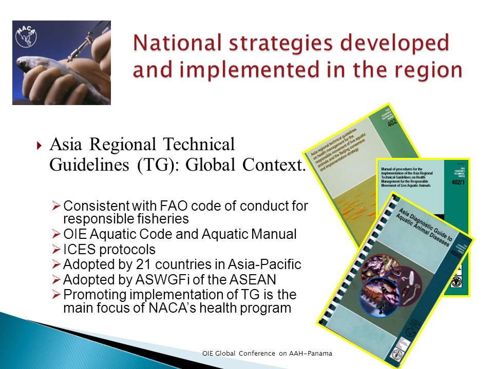 National strategies developed and implemented in the region
