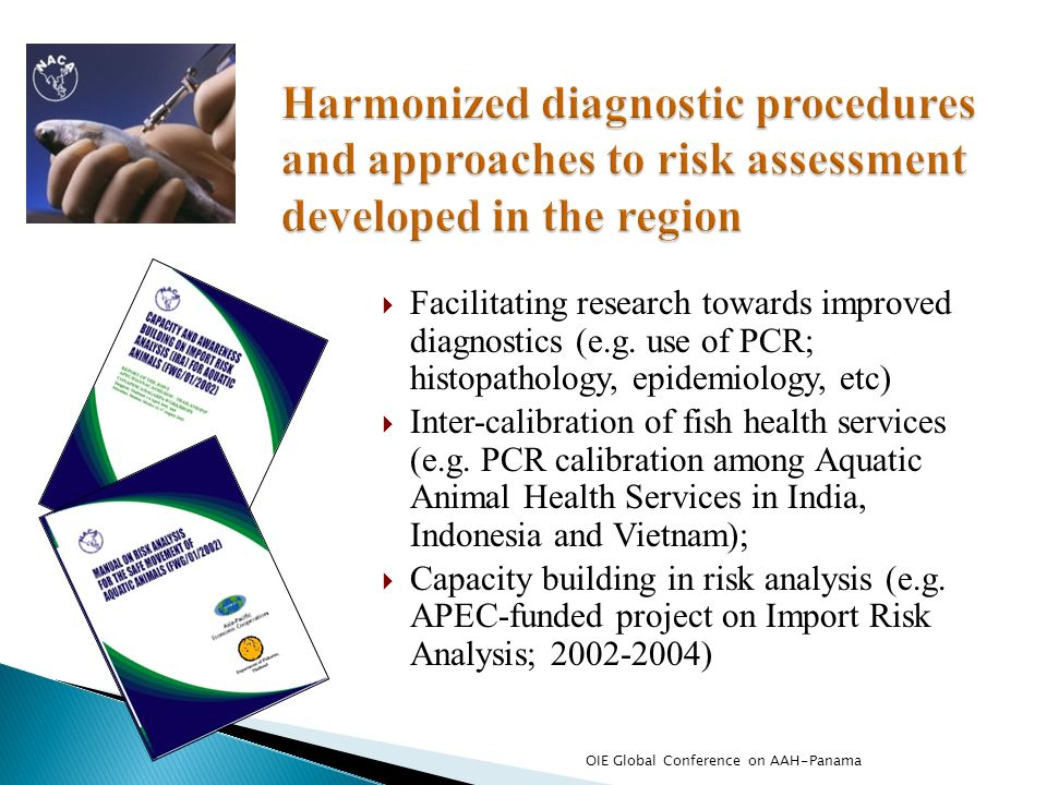Harmonized diagnostic procedures and approaches to risk assessment developed in the region