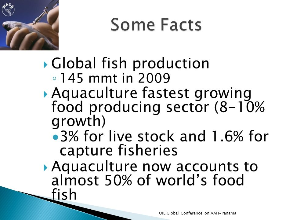 Some Facts Global fish production