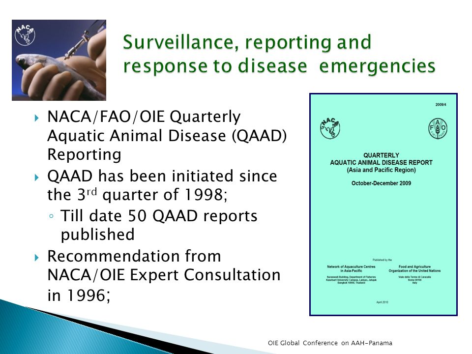 Surveillance, reporting and response to disease emergencies