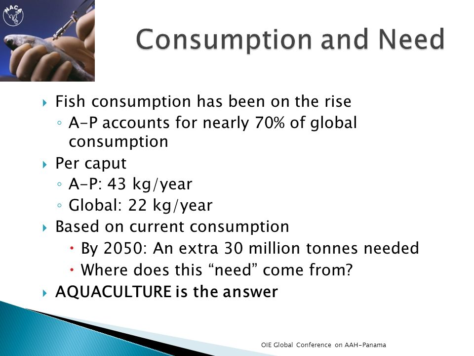 Consumption and Need Fish consumption has been on the rise