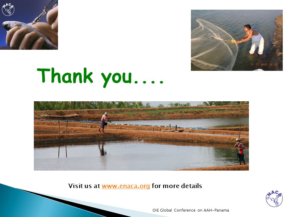 Thank you.... Visit us at www.enaca.org for more details