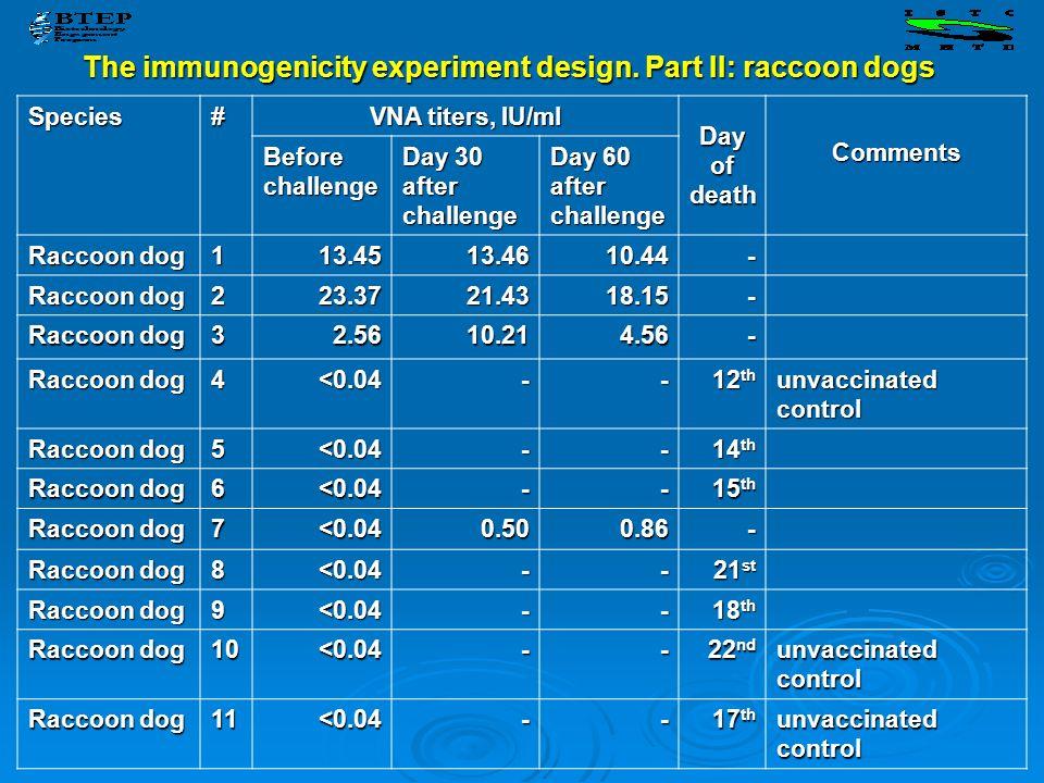 The immunogenicity experiment design. Part II: raccoon dogs