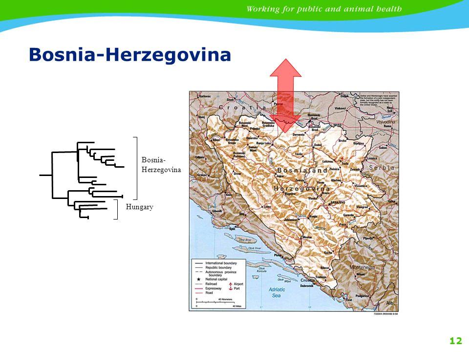 Bosnia-Herzegovina Bosnia-Herzegovina Hungary