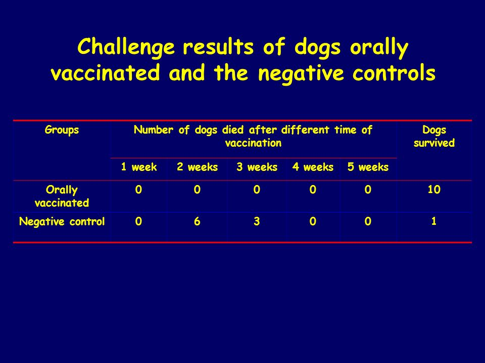 Challenge results of dogs orally vaccinated and the negative controls