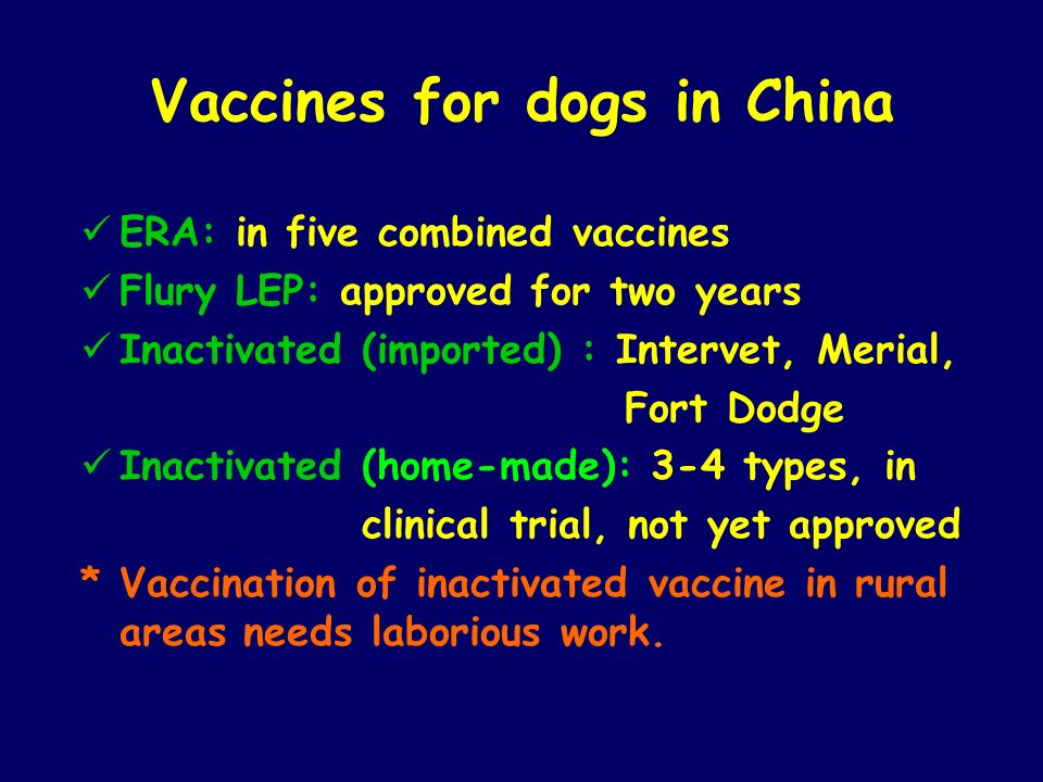 Vaccines for dogs in China