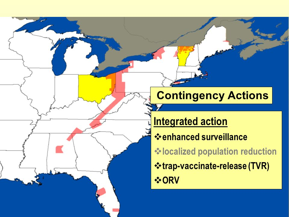 Contingency Actions Integrated action enhanced surveillance