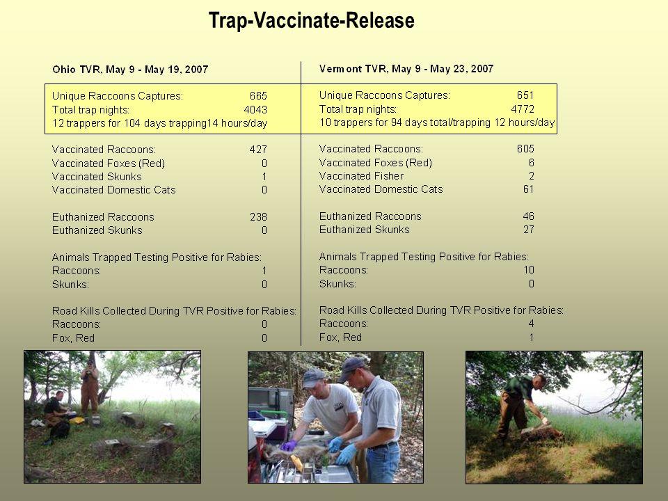 Trap-Vaccinate-Release