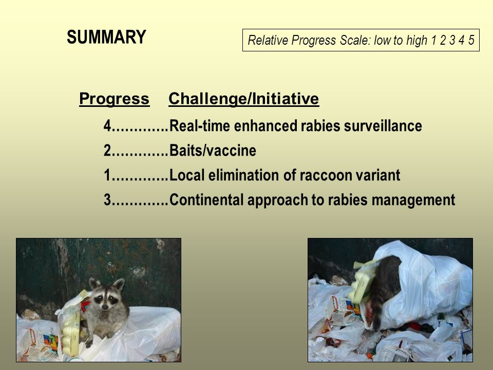 SUMMARY Progress Challenge/Initiative 4…………. 2…………. 1…………. 3………….