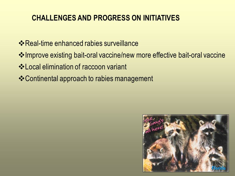 CHALLENGES AND PROGRESS ON INITIATIVES