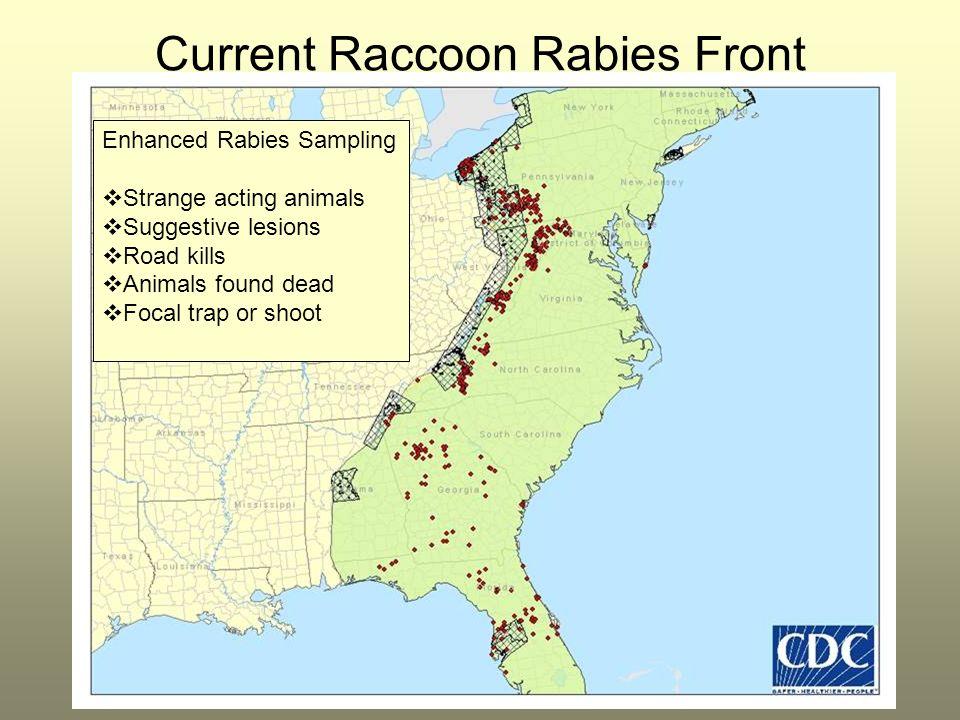 Current Raccoon Rabies Front