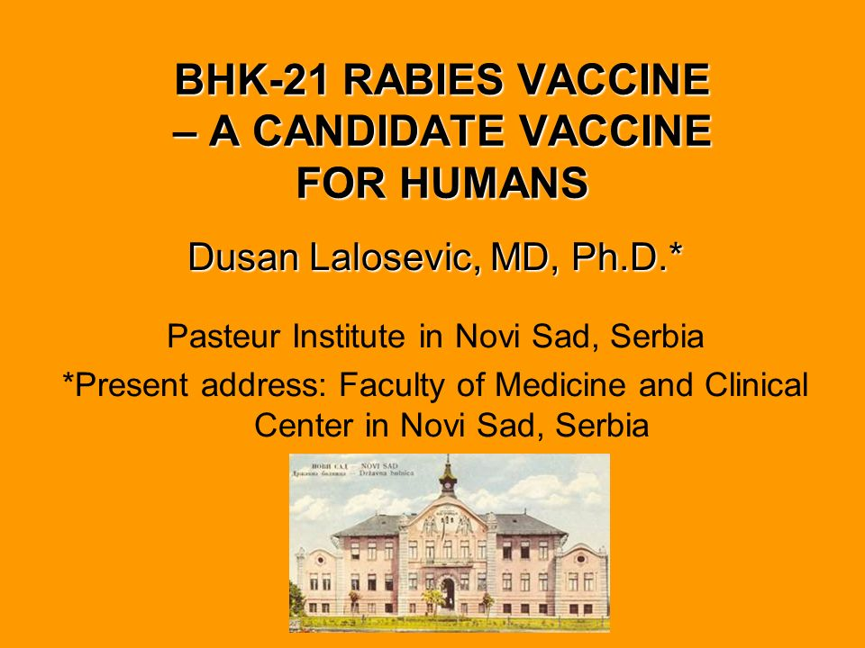BHK-21 RABIES VACCINE – A CANDIDATE VACCINE FOR HUMANS
