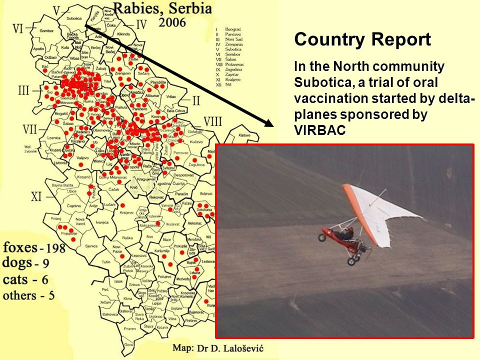 Country Report In the North community Subotica, a trial of oral vaccination started by delta-planes sponsored by VIRBAC.
