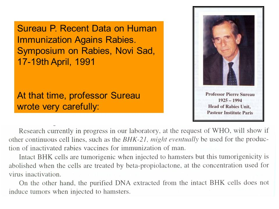 Sureau P. Recent Data on Human Immunization Agains Rabies