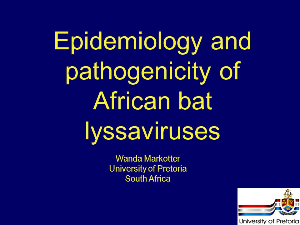 Epidemiology and pathogenicity of African bat lyssaviruses