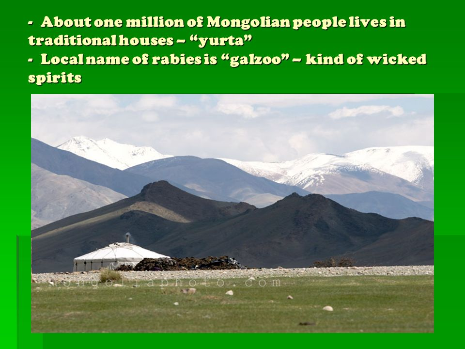 - About one million of Mongolian people lives in traditional houses – yurta - Local name of rabies is galzoo – kind of wicked spirits