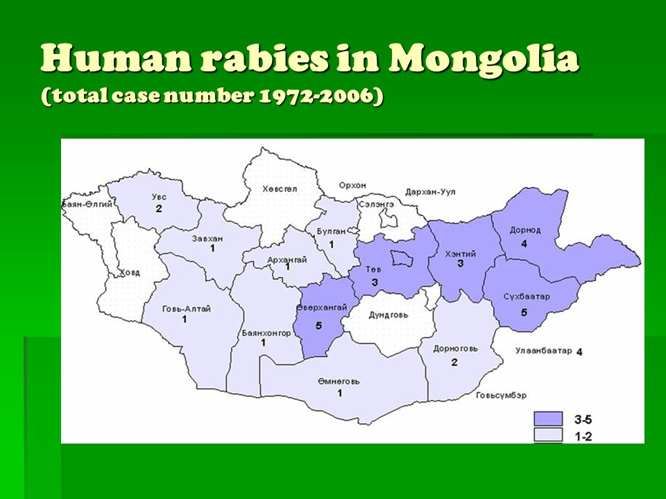 Human rabies in Mongolia (total case number 1972-2006)
