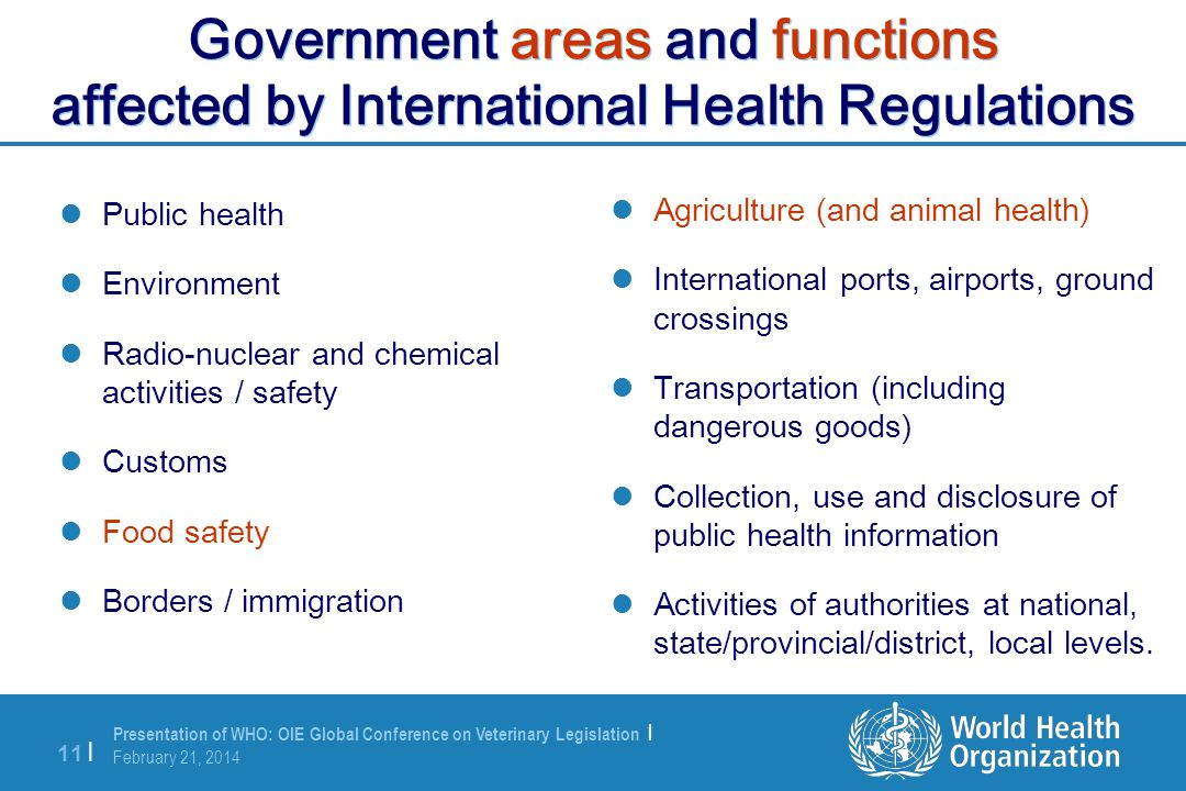 Government areas and functions affected by International Health Regulations