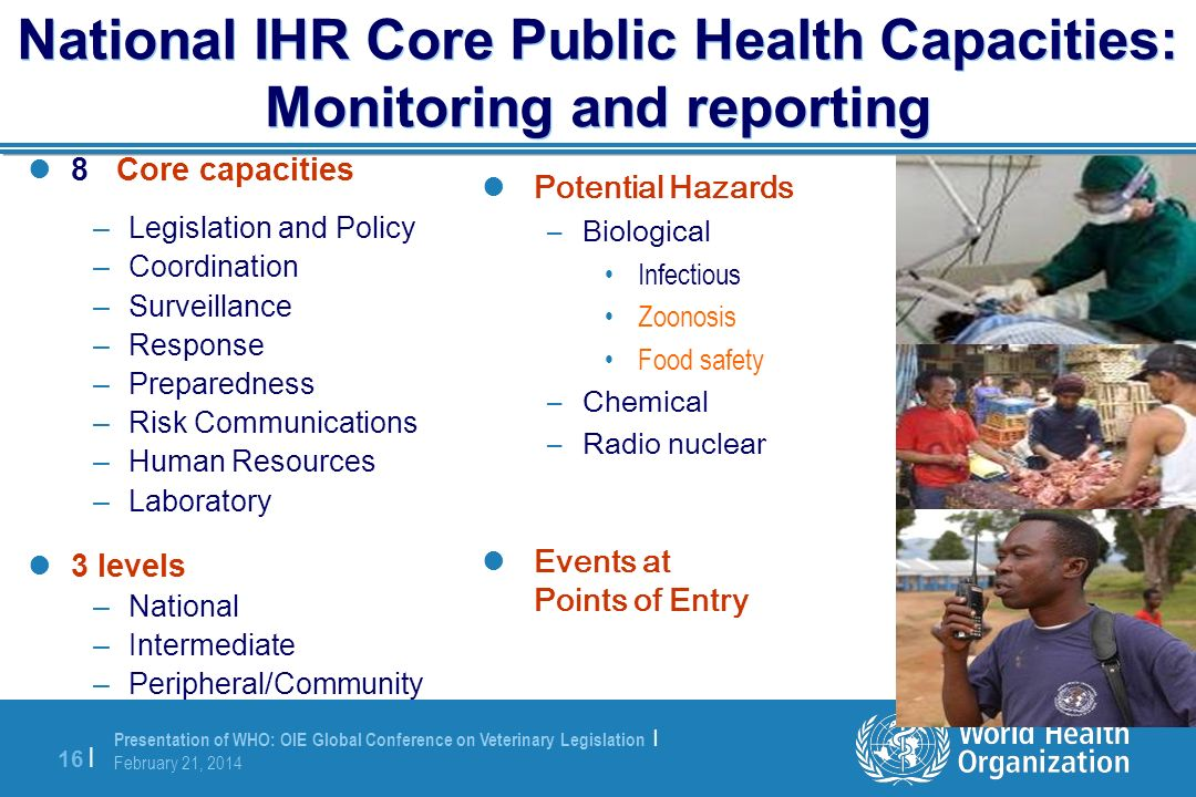 National IHR Core Public Health Capacities: Monitoring and reporting