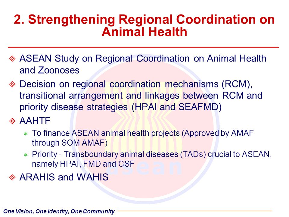 2. Strengthening Regional Coordination on Animal Health