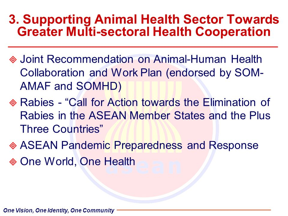 3. Supporting Animal Health Sector Towards Greater Multi-sectoral Health Cooperation