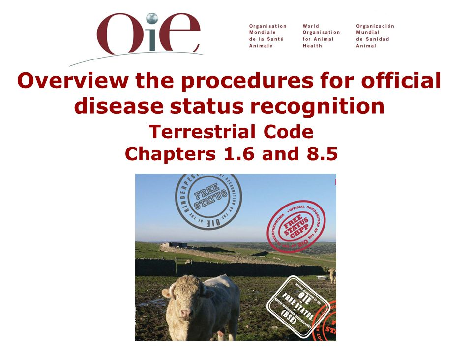 Overview the procedures for official disease status recognition