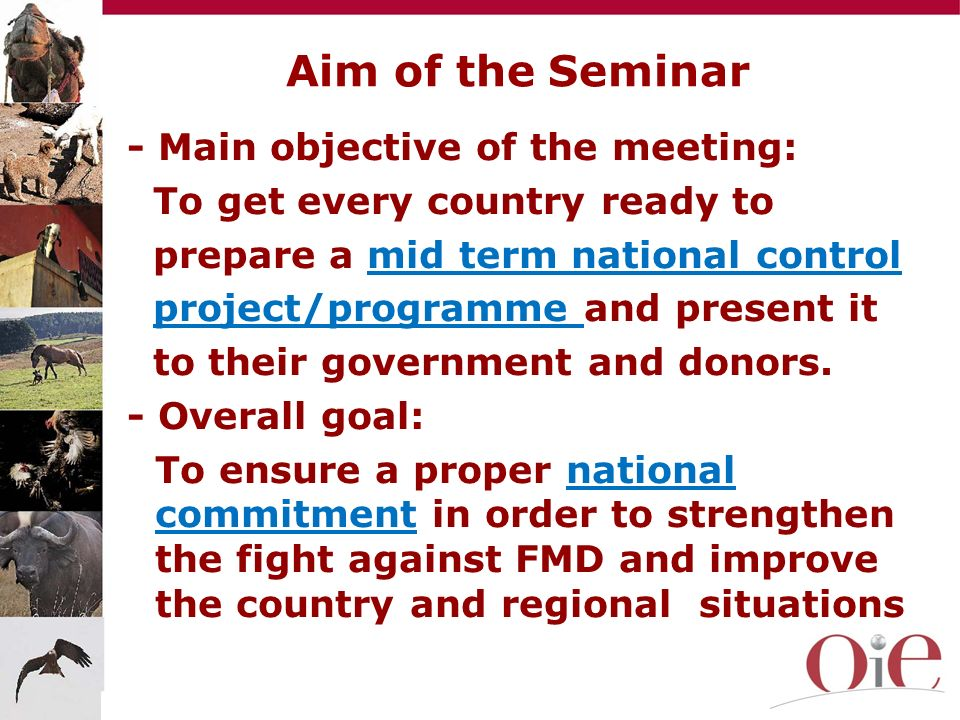 Aim of the Seminar - Main objective of the meeting:
