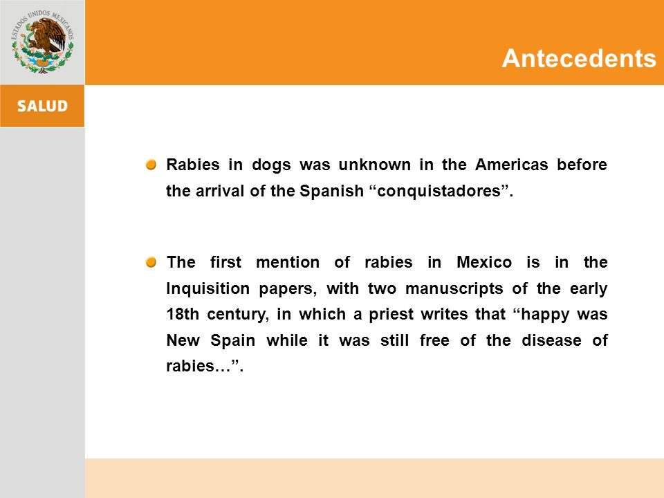 AntecedentsRabies in dogs was unknown in the Americas before the arrival of the Spanish conquistadores .
